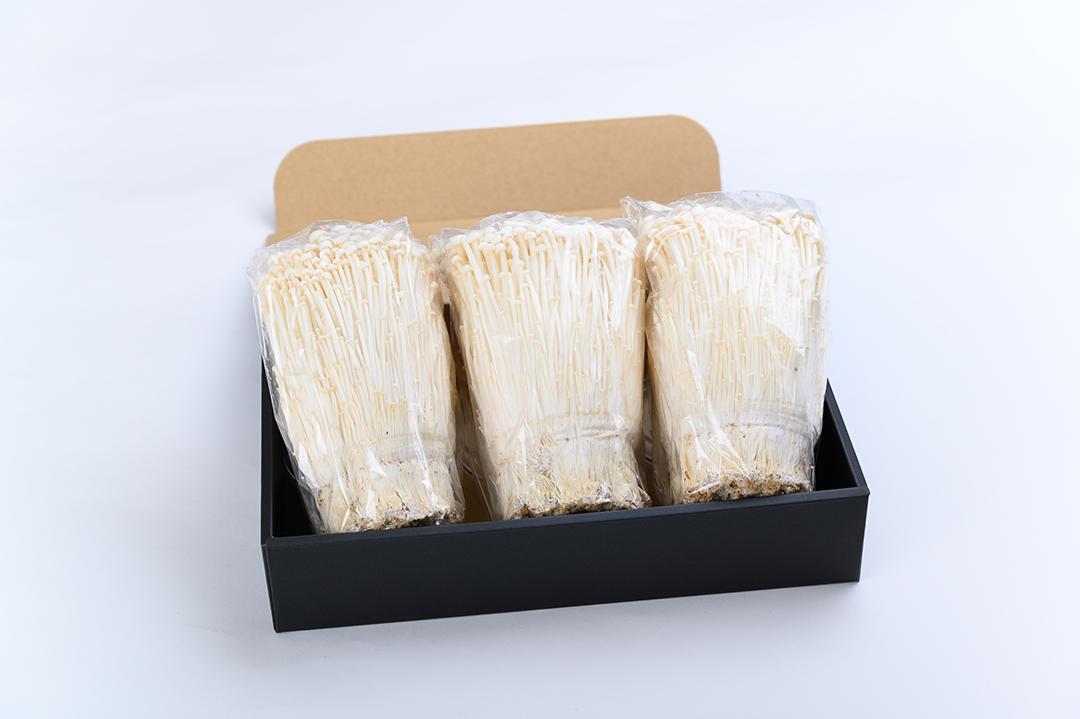 えのき茸(1kg)